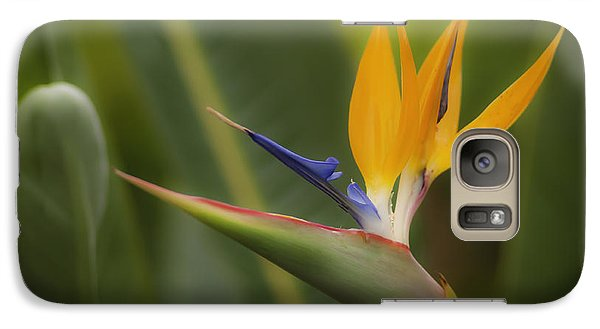 Galaxy Case featuring the photograph Bird Of Paradise by Sherri Meyer