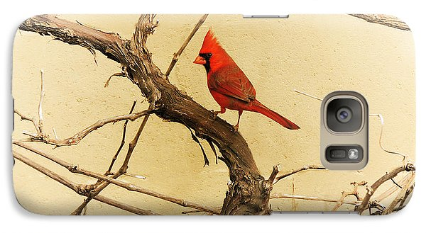 Galaxy Case featuring the photograph Bird On A Vine by Jayne Wilson