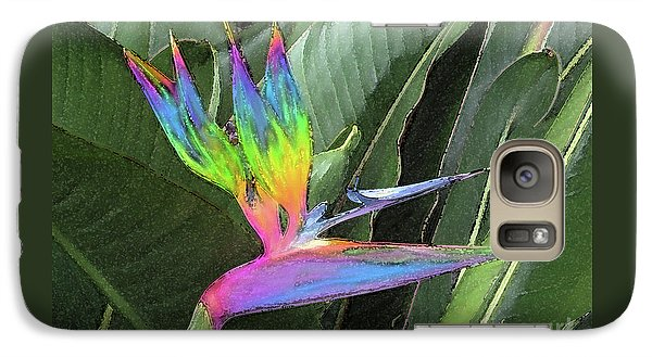 Galaxy Case featuring the photograph Bird Ow  Paradise by Suzette Kallen