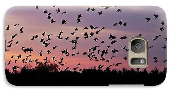 Galaxy Case featuring the photograph Birds At Sunrise by Aimee L Maher Photography and Art Visit ALMGallerydotcom