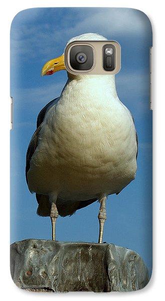 Galaxy Case featuring the photograph Bird's Eye View by Caroline Stella