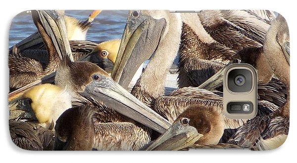 Galaxy Case featuring the photograph Birds Of A Feather by John Glass