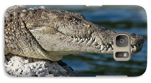 Galaxy Case featuring the photograph Biscayne National Park Florida American Crocodile by Paul Fearn