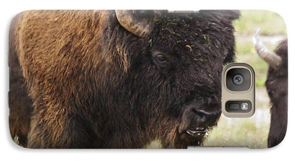 Galaxy Case featuring the photograph Bison From Yellowstone by Belinda Greb