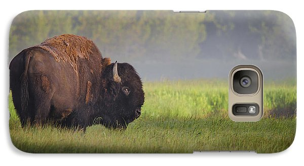 Bison In Morning Light Galaxy S7 Case