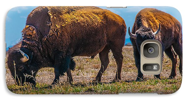 Galaxy Case featuring the photograph Bison Pair_1 by Tom Potter