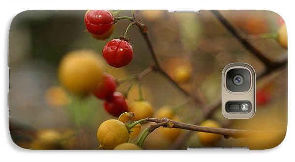 Galaxy Case featuring the photograph Bittersweet - Far by Kenny Glotfelty