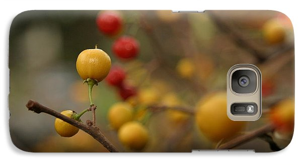 Galaxy Case featuring the photograph Bittersweet - Near by Kenny Glotfelty