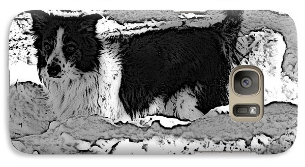 Galaxy Case featuring the photograph Black And White In Snow by Michael Porchik