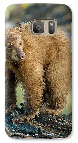 Galaxy Case featuring the photograph Black Bear by Doug Herr