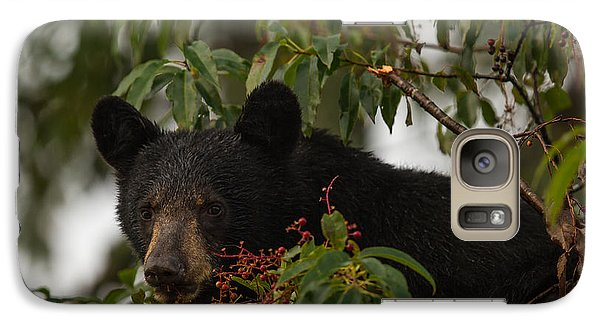 Galaxy Case featuring the photograph Black Bear by Doug McPherson