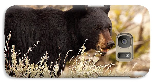 Galaxy Case featuring the photograph Black Bear Showing Teeth by Max Allen