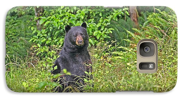 Galaxy Case featuring the photograph Black Bear Standing Up by Peggy Collins