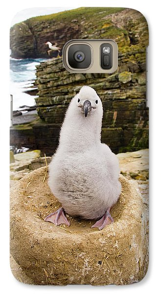 Black-browed Albatross Chick Falklands Galaxy S7 Case