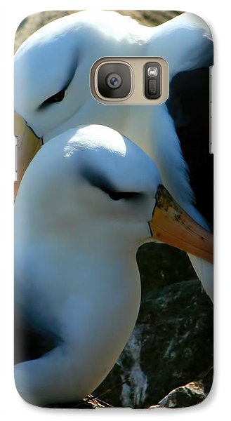 Galaxy Case featuring the photograph Black Browed Albatross Pair by Amanda Stadther