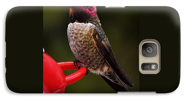 Galaxy Case featuring the photograph Black Chinned Male Hummingbird by Jay Milo