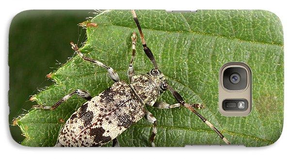 Black-clouded Longhorn Beetle Galaxy S7 Case