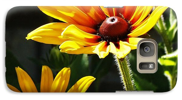 Galaxy Case featuring the photograph Black Eyed Susan by Al Fritz