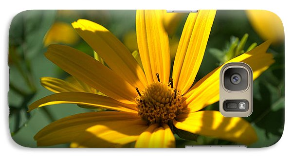 Galaxy Case featuring the photograph Black Eyed Susan by Cathy Shiflett