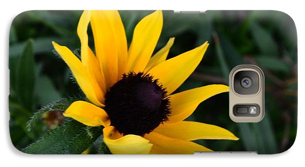 Galaxy Case featuring the photograph Black-eyed Susan Glows With Cheer by Luther Fine Art