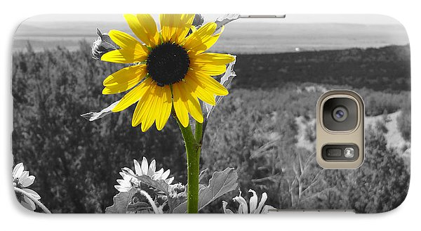 Galaxy Case featuring the photograph Black-eyed Susan by Tom DiFrancesca