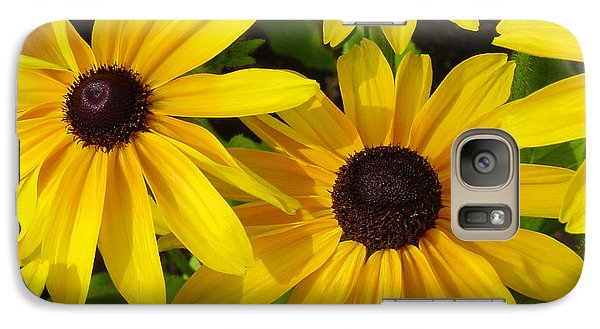 Galaxy Case featuring the photograph Black Eyed Susans by Suzanne Gaff