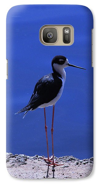 Galaxy Case featuring the photograph Black-necked Stilt by Richard Stephen