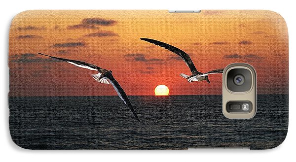 Galaxy Case featuring the photograph Black Skimmers At Sunset by Tom Janca