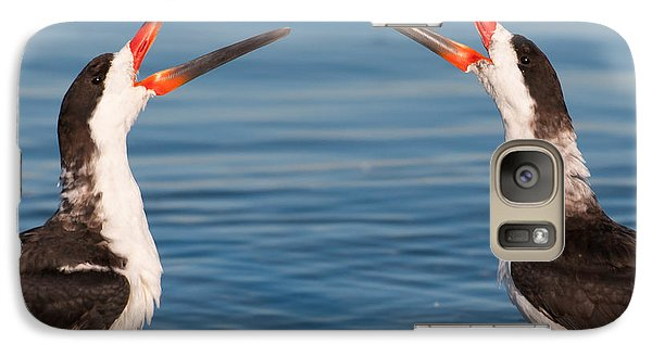 Galaxy Case featuring the photograph Black Skimmers by Avian Resources