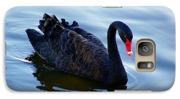 Galaxy Case featuring the photograph Black Swan by Cassandra Buckley