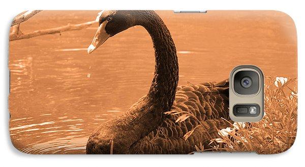 Galaxy Case featuring the photograph Black Swan by Leticia Latocki