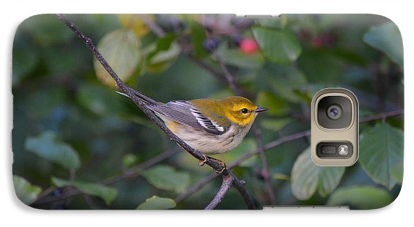 Galaxy Case featuring the photograph Black-throated Green Warbler by James Petersen