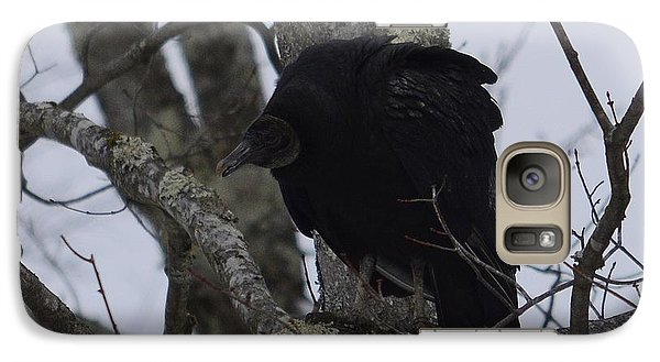 Galaxy Case featuring the photograph Black Vulture by Randy Bodkins