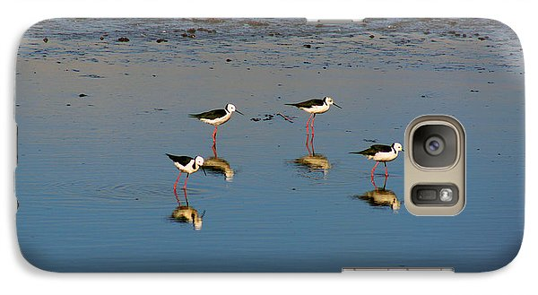 Galaxy Case featuring the photograph Black Winged Stilts by Cassandra Buckley