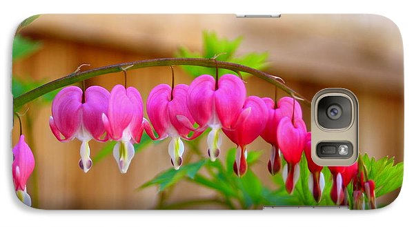 Galaxy Case featuring the photograph Graceful Arch Of Bleeding Heart by Patti Whitten