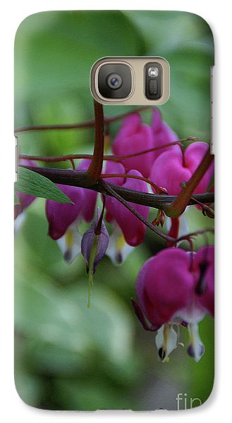 Galaxy Case featuring the photograph Bleeding Heart by Linda Shafer