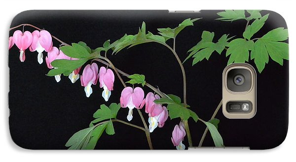 Galaxy Case featuring the photograph Bleeding Hearts 2 by Jeannie Rhode