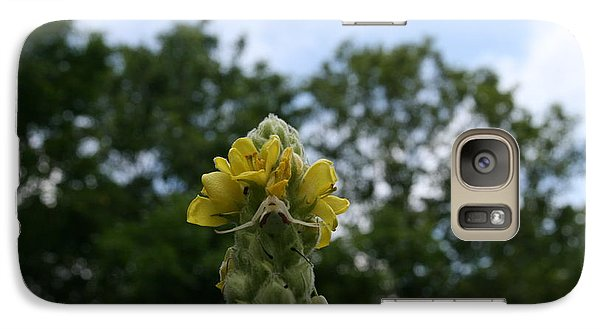 Galaxy Case featuring the photograph Blended Golden Rod Crab Spider On Mullein Flower by Neal Eslinger