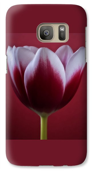 Galaxy Case featuring the photograph Abstract Red White Flowers Tulips Macro  Photography Art by Artecco Fine Art Photography