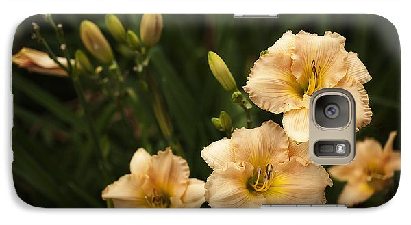 Galaxy Case featuring the photograph Blooming Garden by Phyllis Peterson