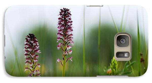 Galaxy Case featuring the photograph Blossom Among Grass Straws by Kennerth and Birgitta Kullman