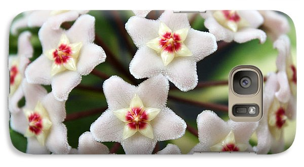 Galaxy Case featuring the photograph Blossom Explosion by Debbie Hart