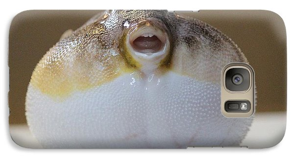 Galaxy Case featuring the photograph Blowfish by Cynthia Snyder