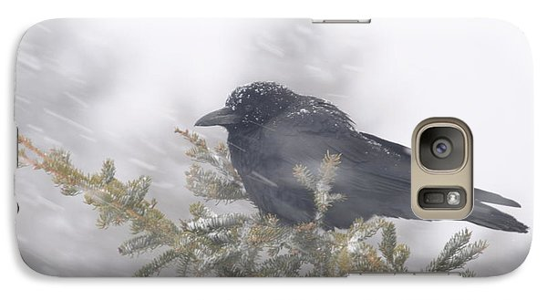 Galaxy Case featuring the photograph Blowin' In The Wind - Crow by Sandra Updyke