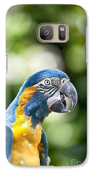 Blue And Gold Macaw V2 Galaxy Case by Douglas Barnard