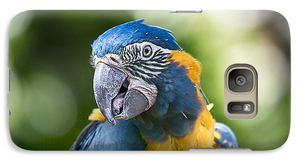 Blue And Gold Macaw V3 Galaxy S7 Case