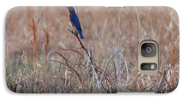 Galaxy Case featuring the photograph Blue Bird by Mark McReynolds