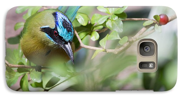 Galaxy Case featuring the photograph Blue-crowned Motmot by Rebecca Sherman