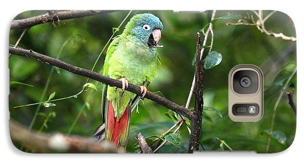 Blue Crowned Parakeet Galaxy Case by James Brunker