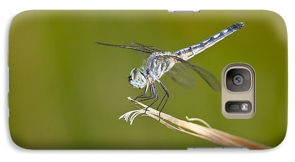 Galaxy Case featuring the photograph Blue Dasher On The Edge by Bryan Keil